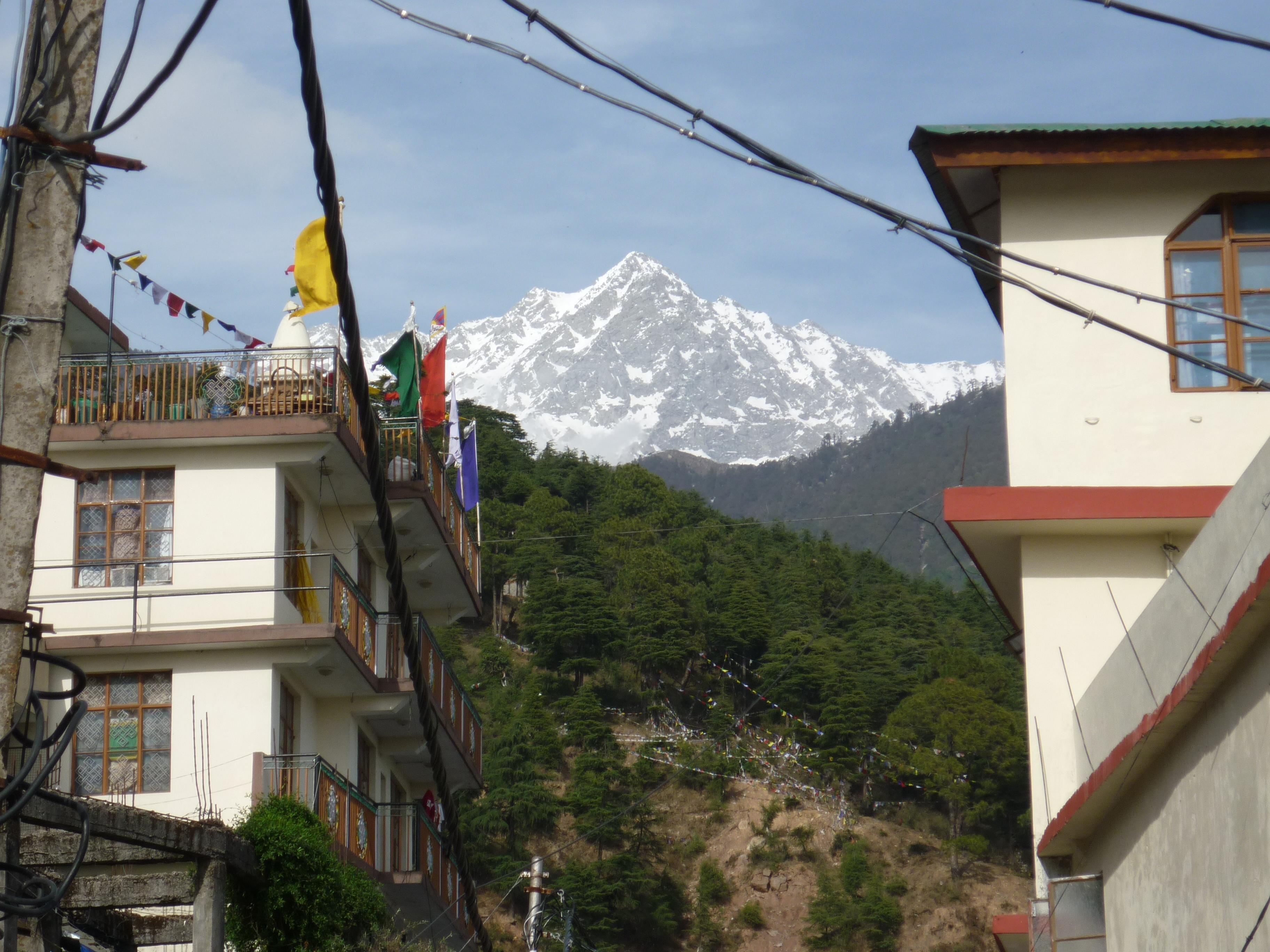 Dharamsala // Dharamsala in den Bergen des Himalaja ist der offizielle Sitz der Tibetischen Exilregierung. An manchen Tagen im Jahr gibt der Dalai Lama Teachings, zu welchen hunderte Menschen aus aller Welt strömen. Leider habe ich kein Transistorradio bei mir, um der englischen Übersetzung seiner Rede zu lauschen, so dass es mir schnell langweilig wird und ich seinen Palast verlasse, um mir ein Frühstück zu gönnen. Bei einem Milchkaffee wird mir bewusst, dass ich weiterhin keinen Geistlichen in meinem Leben benötige und setze meinen Weg zum wahren Ursprung des Buddhismus fort ...