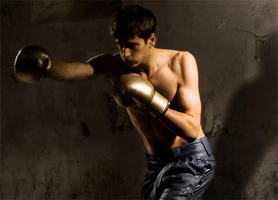 kk09_boxer_hoch